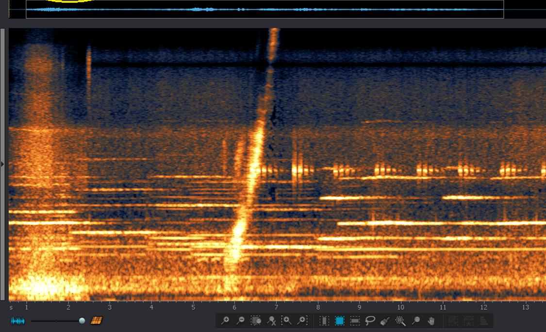 audio noise